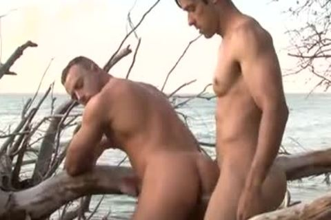 Sex On Ttgreetingss guy Beach