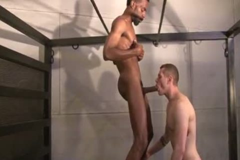 Chase Coxxx And Blue Bailey
